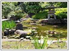 La jardineria paisajista for Jardineria paisajista